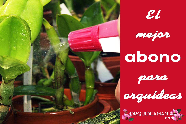 el mejor abono para orquídeas